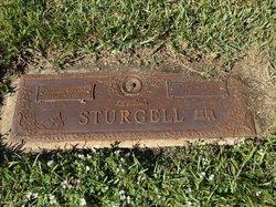 Margaret C Sturgell