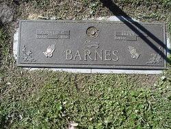 Ronald C Barnes