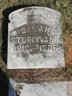 Selah Sturdivant