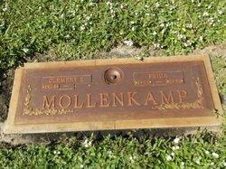 Clement B Mollenkamp