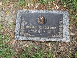 Harold A Holbrook