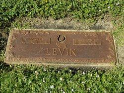Frank E Levin