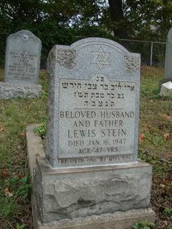Lewis Stein