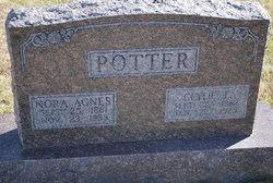Clyde Elmer Potter