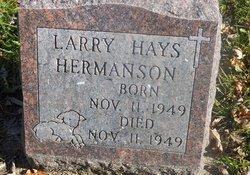 Larry Hays Hermanson