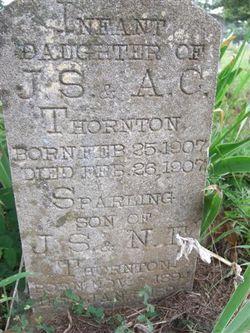 Sparling Thornton