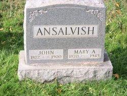 John Ansalvish
