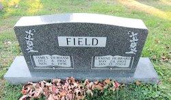James Durham Field