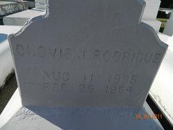 Clovis J Rodrigue