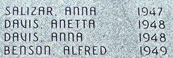 Anna Nelded Salizar