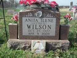 Anita Ilene <I>Luttrell</I> Wilson