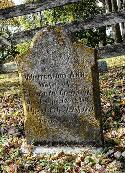 Winterfoot Ann Gregory