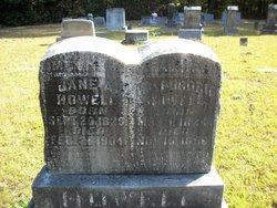 Jane Alvina <I>Sewell</I> Howell