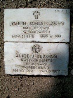 Alice J Reagan