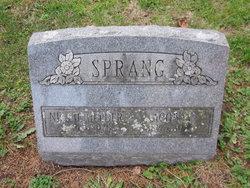 Jacob Albert Hendrik Sprang