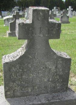 Sr Mary Agnes Sheehan