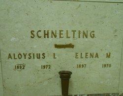 Elena M Schnelting