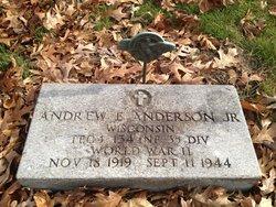 Andrew E Anderson, Jr