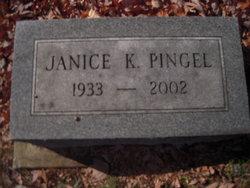 Janice K Pingel