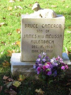 Bruce Cameron Aulenbach