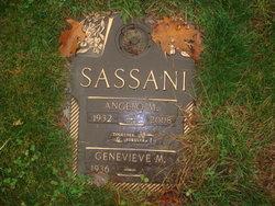 Angelo M. Sassani