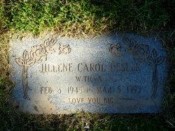 Jillene Carol <I>Piatt</I> Desler