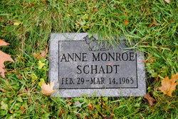 Anne Monroe Schadt