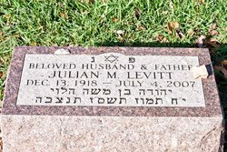 Julian M Levitt