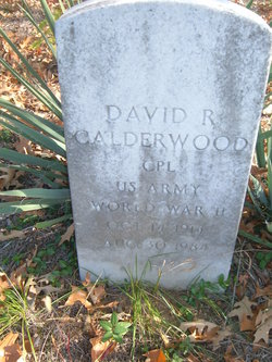David R Calderwood