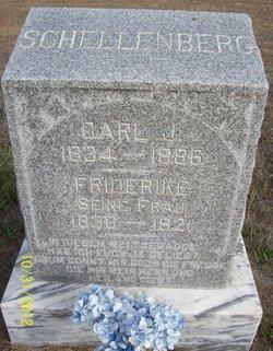 Carl J. Schellenberg