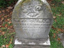 William L Climes
