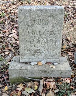 Eleanor Pollard
