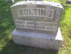 Mary Ann <I>Jones</I> Wolting