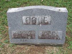 Sarah <I>Lowe</I> Cole