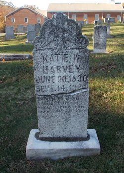 Katie W Harvey