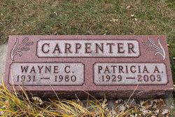 Wayne C Carpenter