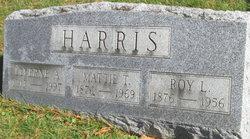 Roy Lorenzo Harris