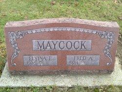 Elvina E Maycock