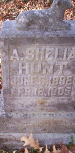 A Shelia Hunt
