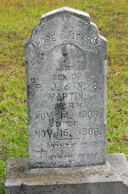 Andrew Jackson Martin