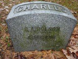Charles A Dolson
