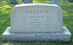 Ann J Anderson