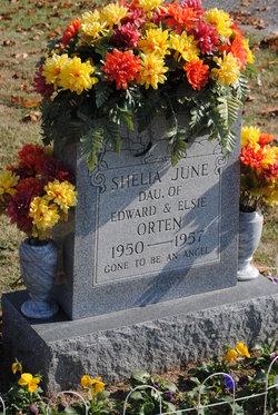 Shelia June Orten