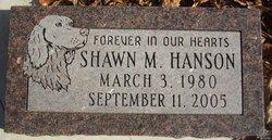 Shawn M Hanson