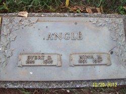 Evert G Angle