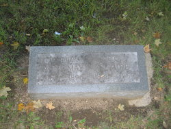 Anne May Kellogg
