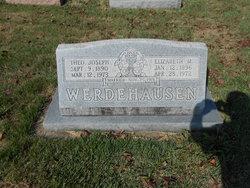 Theodore Joseph Werdehausen