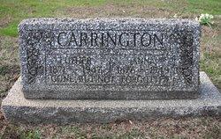 Anna <I>Riley</I> Carrington