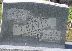 Junie Elizabeth <I>Bryant</I> Chavis