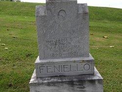 James Feniello